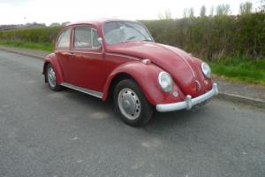 67 VW Beetle UK RHD 1500 - 1 owner from new !!, fantastic patina, future classic Photo