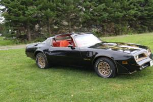 1977 Pontiac Firebird trans am spécial édition