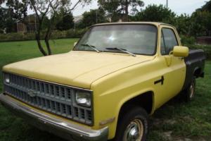 1982 Chevrolet C/K Pickup 1500