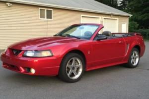 2001 Ford Mustang COBRA SVT CONVERTIBLE