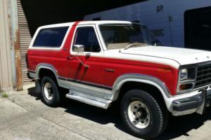 Ford Bronco 1981 XLT V8 351