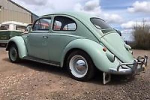 vw beetle 1959 tax exempt