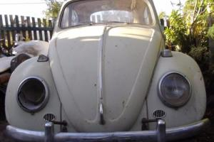 Classic 1966 VW Beetle 99% rust free no bog reco motor patina ratty