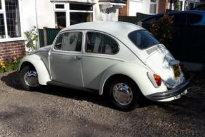 1969 classic VW Beetle Photo