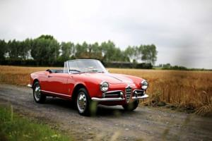 1959 Alfa Romeo Giulietta Spider Photo