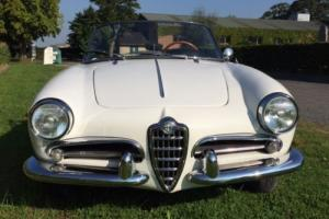 1961 Alfa Romeo Giulietta Spider Photo