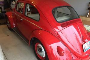 1960 Volkswagen Beetle - Classic