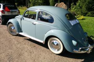 Volkswagen Oval Beetle 1956 stunning condition, never welded, VW Käfer ovali Photo