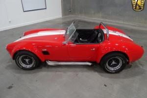 1966 Cobra Shelby Replica Photo