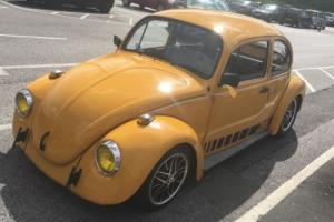 VW classic jeans beetle