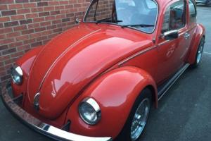 vw beetle Mexico Photo