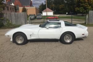 1978 Chevrolet Corvette Photo
