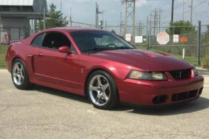 2004 Ford Mustang SVT 2dr Supercharged Coupe