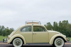 1967 Volkswagen Beetle - Classic Photo