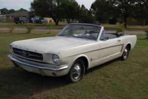 1964 Ford Mustang Photo