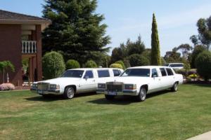 2 White Limousines