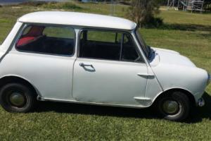 MINI 1965 DELUXE