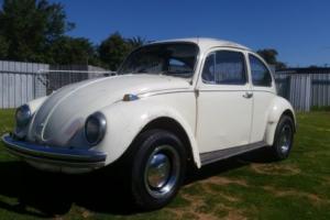 1969 VW Volkswagon beetle