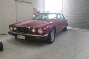 1980 Jaguar XJ6 Photo
