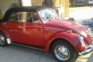 1967 Volkswagen Beetle - Classic CONVERTIBLE
