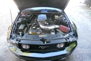 2006 Ford Mustang Premium Photo