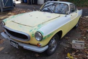 1965 Volvo Other