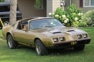 1979 Pontiac Firebird    eBay