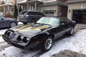 Pontiac: Trans Am Coupe | eBay