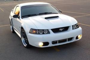 2004 Ford Mustang 40th Anniversary GT