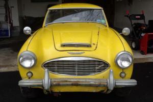 1961 Austin Healey 3000 Photo
