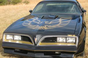 1977 Pontiac Trans Am Black on Gold