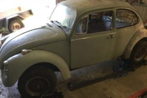 1971 VW Beetle No Reserve