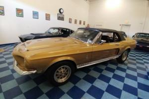 1968 Shelby GT 500 Convertible Photo