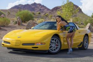 2003 Chevrolet Corvette CORVETTE 50TH Z06 41K LOW MILES NEEDS NOTHING
