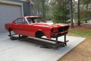 1965 Shelby Mustang Photo