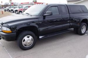 2004 Dodge Other Pickups Photo