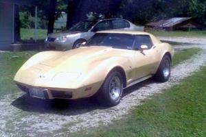 1977 Chevrolet Corvette l48 Photo
