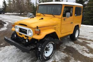Toyota: Land Cruiser FJ40 | eBay Photo