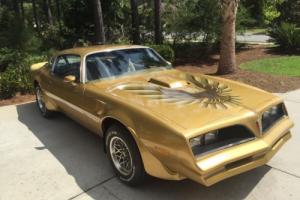 1978 Pontiac Trans Am Trans Am Photo