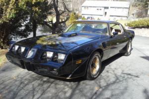 1981 Pontiac Trans Am TRANS AM Photo