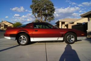 1987 Pontiac Trans Am Photo