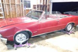 1965 Pontiac GTO GTO