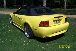 MUSTANG FORD COBRA CONVERTIBLE