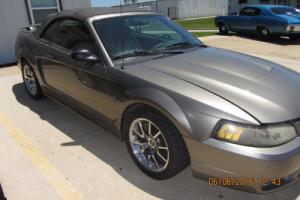2001 Ford Mustang Cobra Convertible SVT
