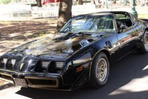 1981 Pontiac Trans Am Photo