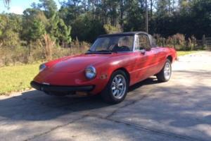 1982 Alfa Romeo Spider