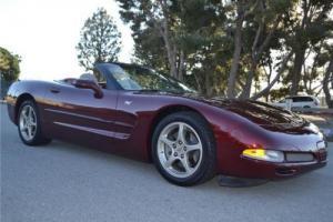 2003 Chevrolet Corvette 50th Anniversary Photo