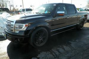 2013 Ford F-150 Platinum Photo