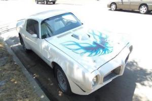 1975 Pontiac Trans Am Photo