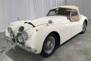 1952 Jaguar XK OTS Photo